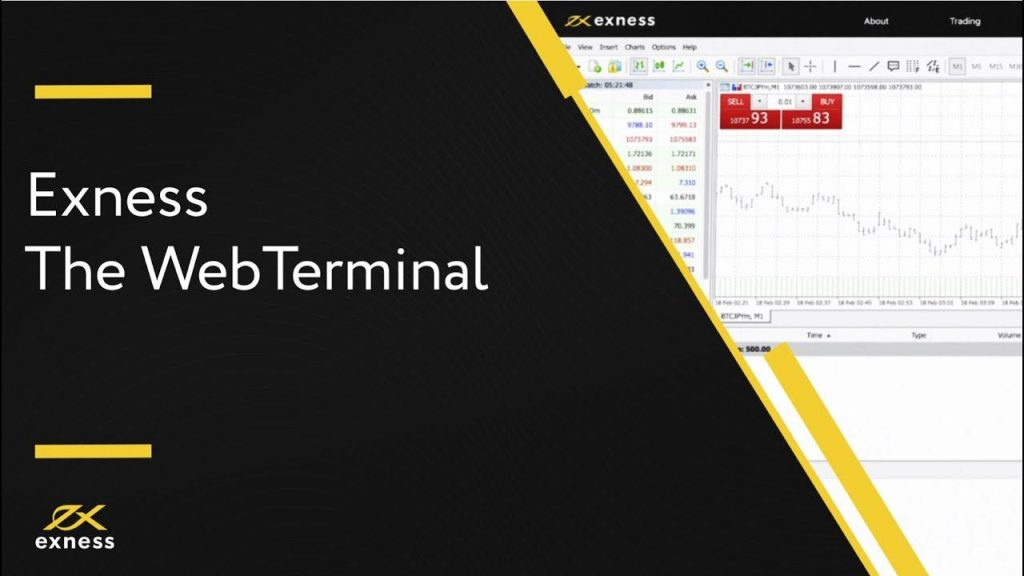 exness webterminal